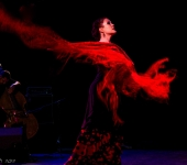 Groupe de Flamenco de Stephen | Paris (75)